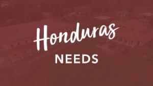 Honduras Needs
